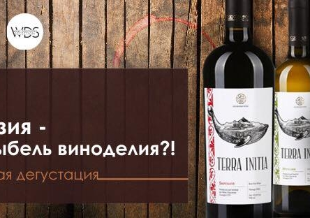 """Дегустация """"Грузия - колыбель виноделия?!"""""""